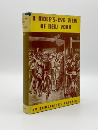 A Mole's-Eye View of New York. Democritus HASCHID