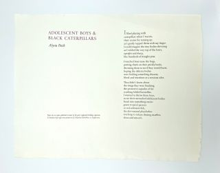 Adolescent Boys & Black Caterpillars [Broadside]. Alysia PEICH