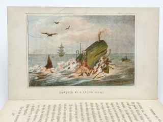 Fighting the Whales: Or, Doings and Dangers of a Fishing Cruise